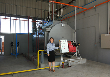 4Th-Oil-Gas-Dual-Fuel-Fired-Steam-Boiler-in-Myanmar- 1