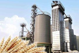 Grain processing factory